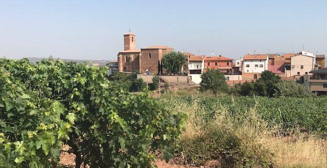 Ronde van Rioja voorbereiding op Iron Man met Tri Team Go Nuts